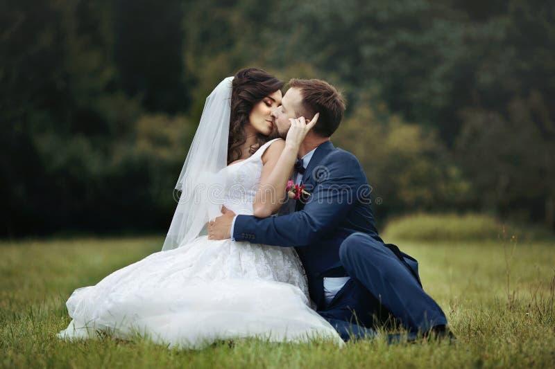 Noivo feliz considerável que abraça e que beija a noiva bonita quando s imagens de stock