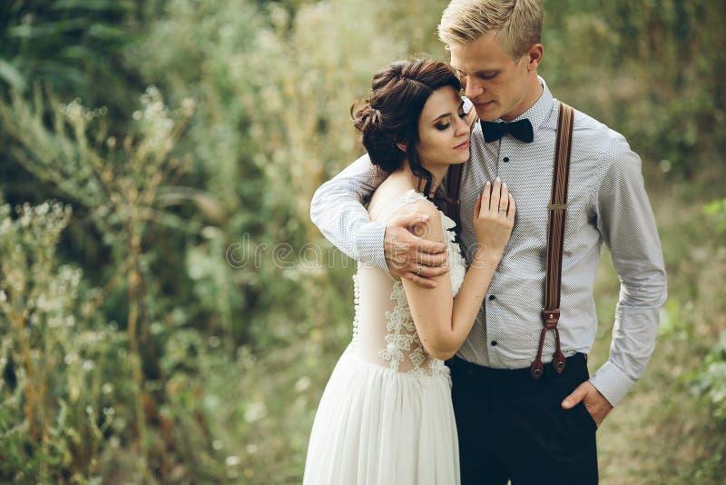 Download Noivo Que Abraça Delicadamente Sua Noiva Imagem de Stock - Imagem de fêmea, amor: 65577015