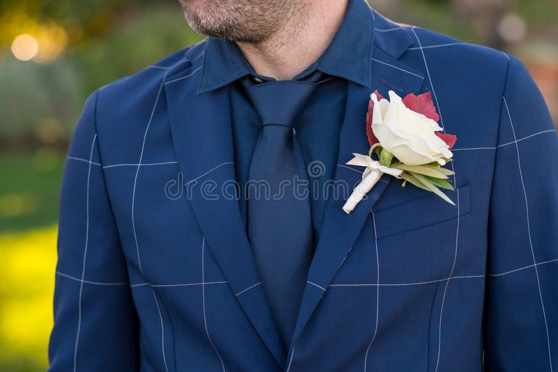 Noivo Trendy Tux e Boutineer imagem de stock royalty free
