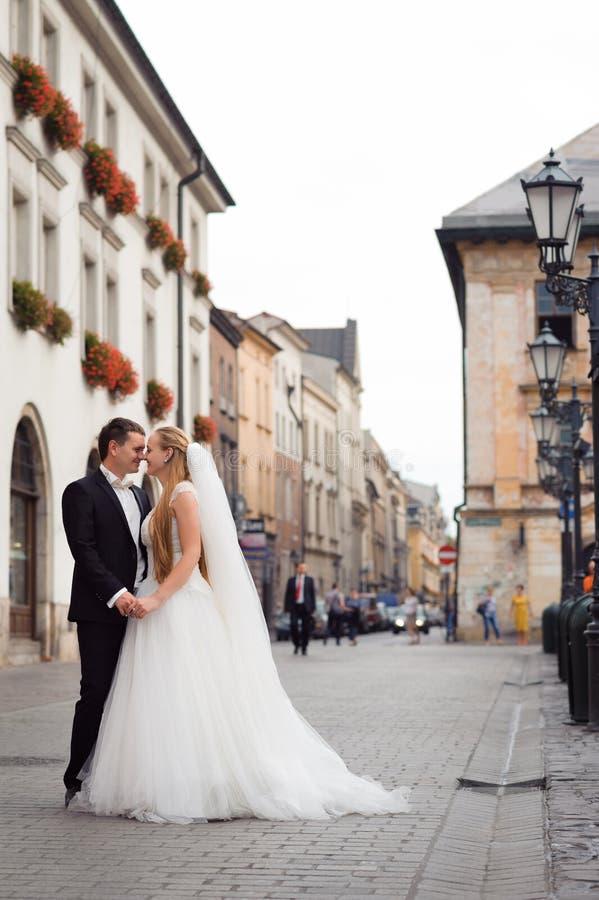 Noivos antes do casamento fotografia de stock royalty free