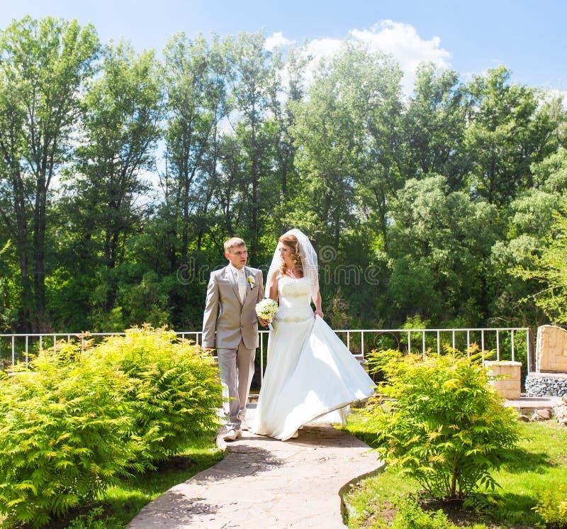 Noivos elegantes fora em um dia do casamento imagem de stock royalty free