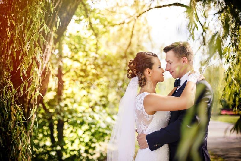 Noivos elegantes que levantam junto fora em um dia do casamento fotografia de stock