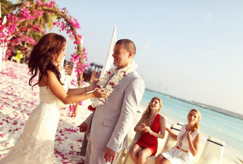 Noivos felizes em seu dia do casamento fotos de stock