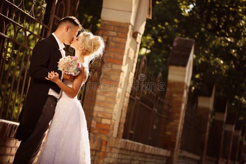 Noivos Kissing no parque fotografia de stock royalty free