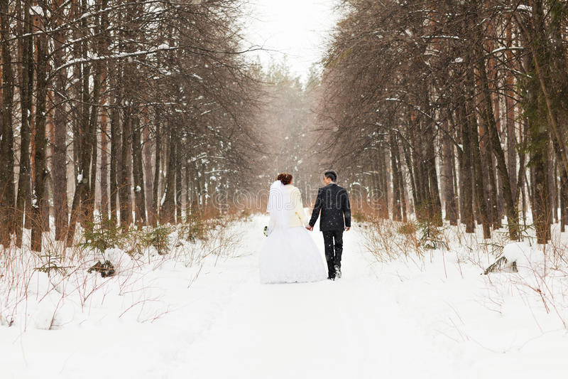 Noivos nas madeiras do inverno imagens de stock