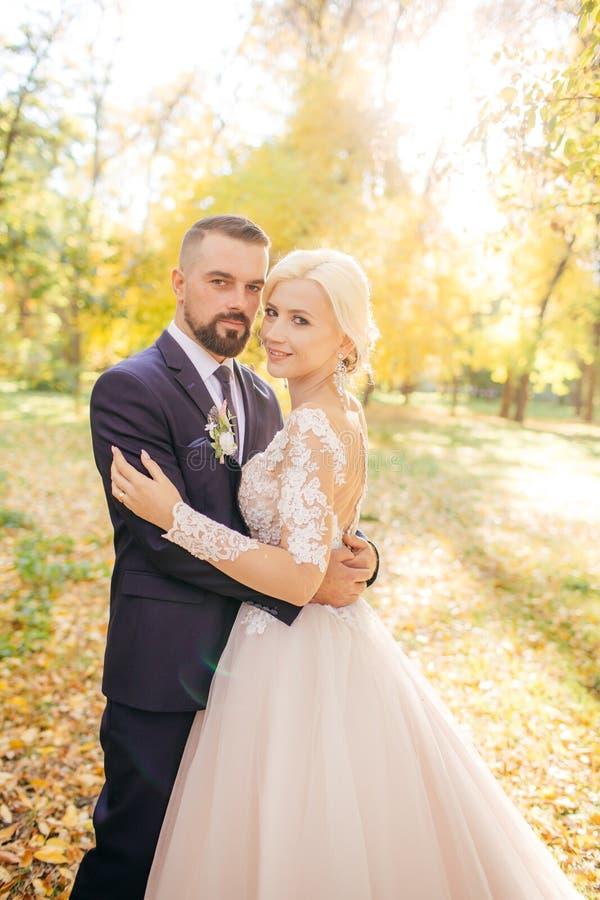Noivos no dia do casamento que andam fora imagem de stock