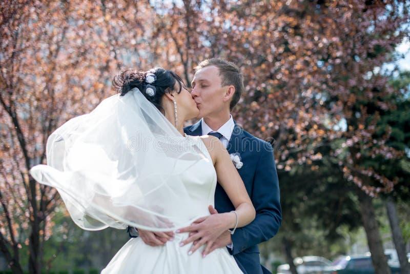 Noivos no dia do casamento que andam fora na natureza da mola Pares nupciais, mulher feliz do recém-casado e homem abraçando em p imagem de stock royalty free