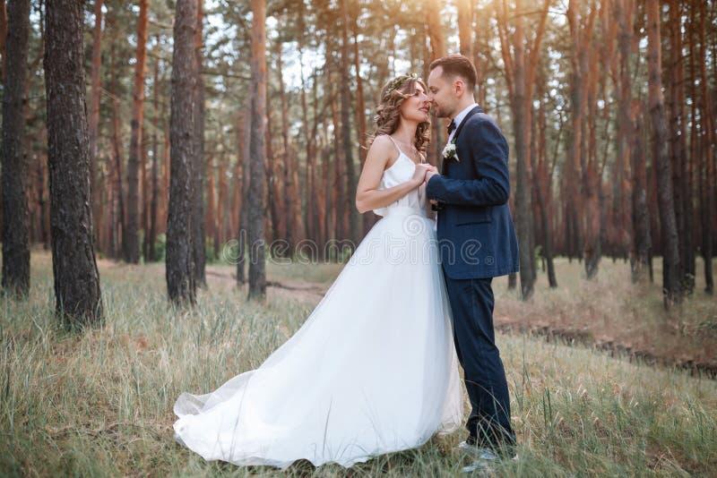 Noivos no dia do casamento que andam fora na natureza do verão Pares nupciais, mulher feliz do recém-casado e homem abraçando em  foto de stock royalty free