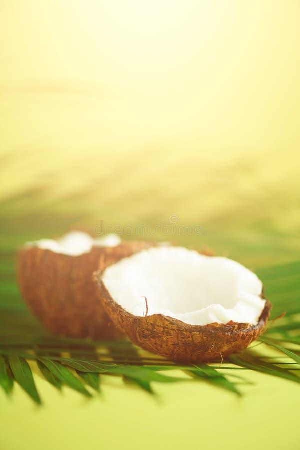Noix de coco au-dessus des palmettes vertes tropicales sur le fond jaune Copiez l'espace Conception d'art de bruit, concept créat photo stock
