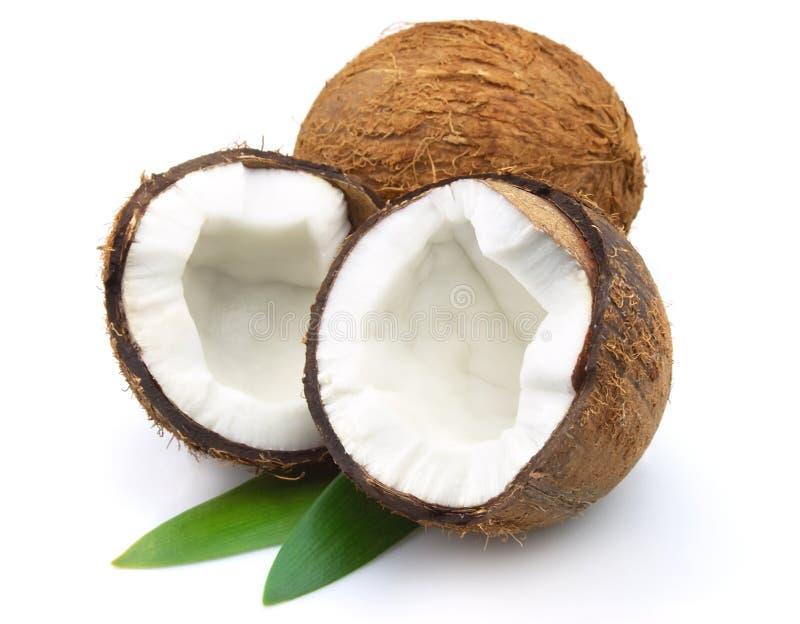 Noix de coco avec des lames photos stock