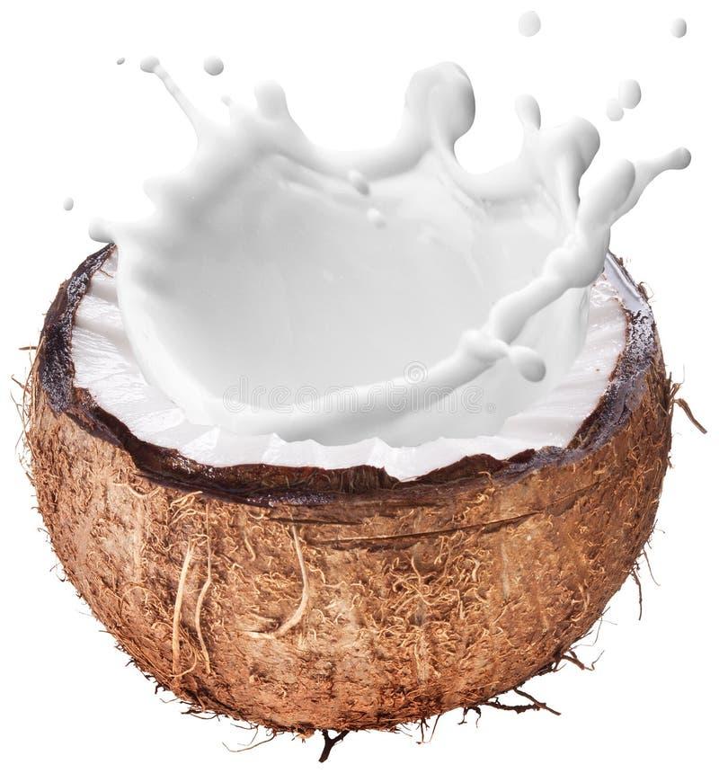 Noix de coco avec l'éclaboussure de lait à l'intérieur images stock