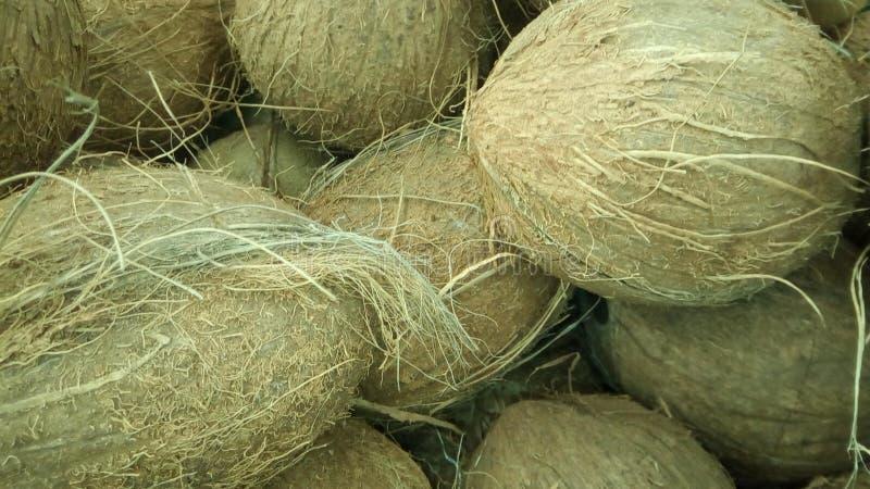 Noix de coco de Brown à l'arrière-plan de magasin photo libre de droits