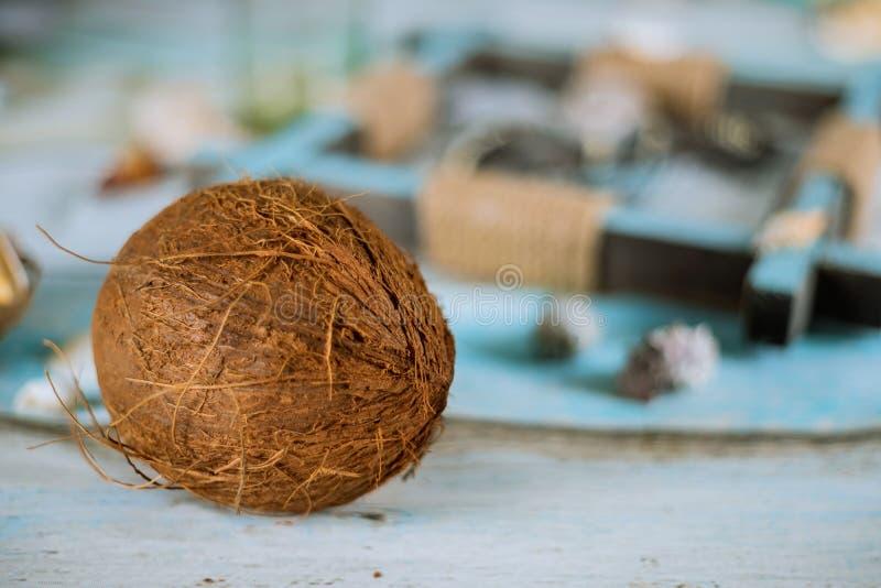 Noix de coco de composition en été, coquilles de mer sur le concept étendu plat de planche bleue en pastel image libre de droits