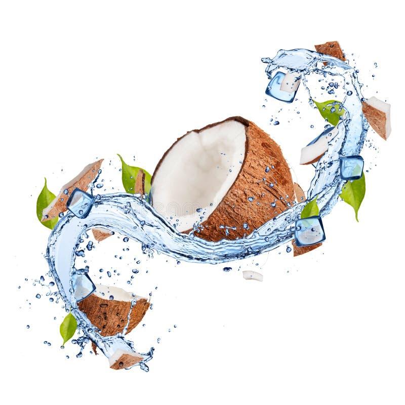 Noix de coco dans l'éclaboussure de l'eau sur le fond blanc photographie stock
