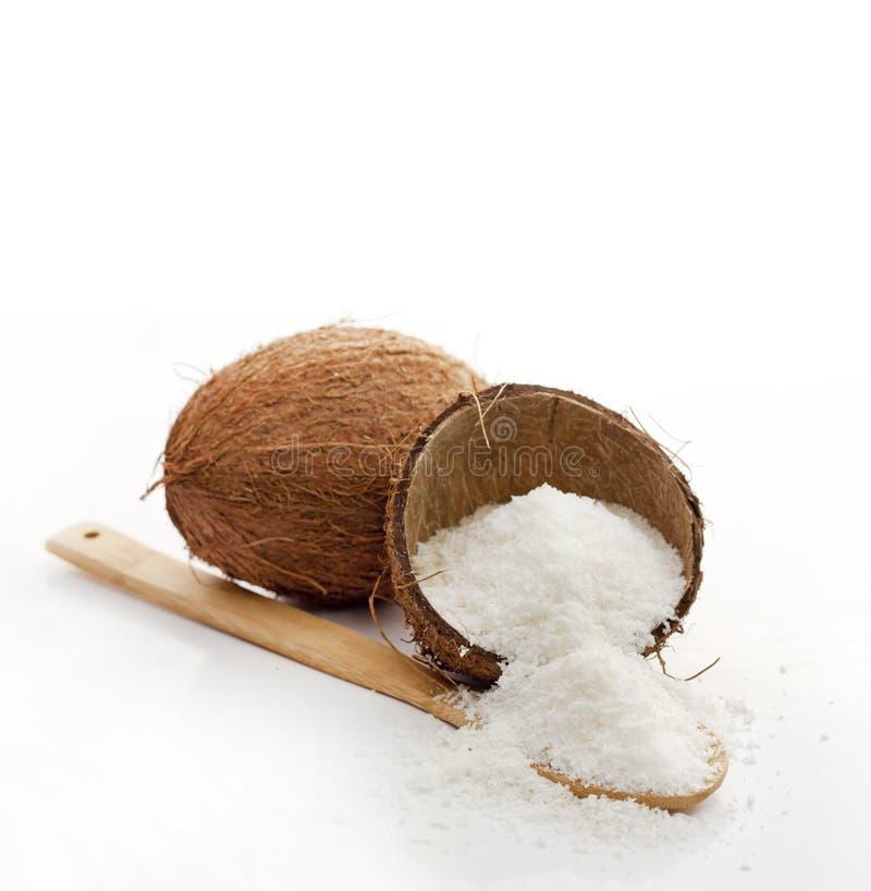 Noix de coco et coprah image stock