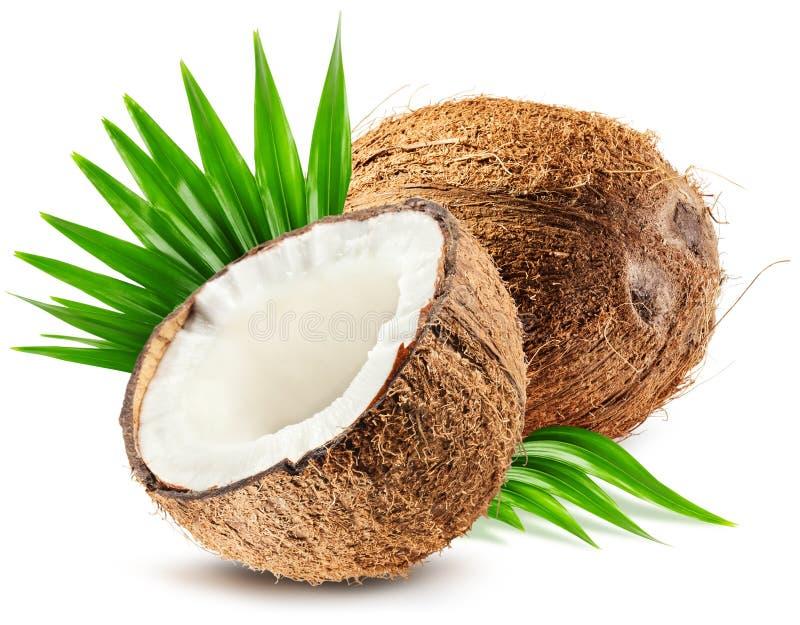 Noix de coco et feuille d'isolement sur le fond blanc images stock