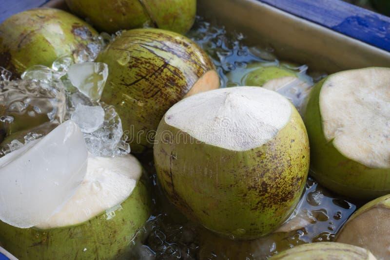 Noix de coco fraîche en eau et glace images libres de droits