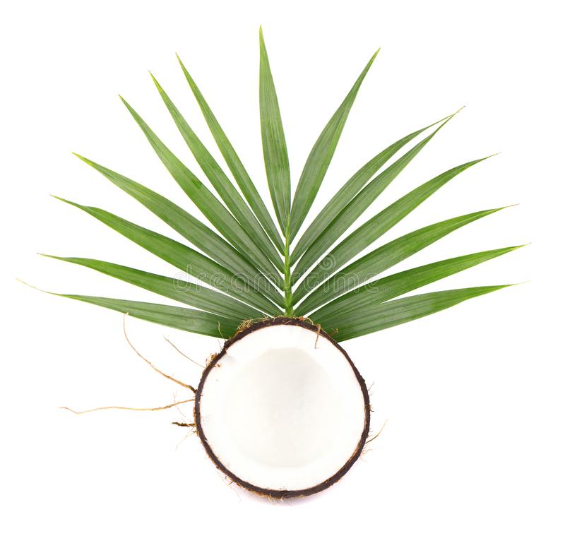 Noix de coco de fruit tropical Noix de coco fraîche avec des feuilles d'isolement sur le fond blanc image stock