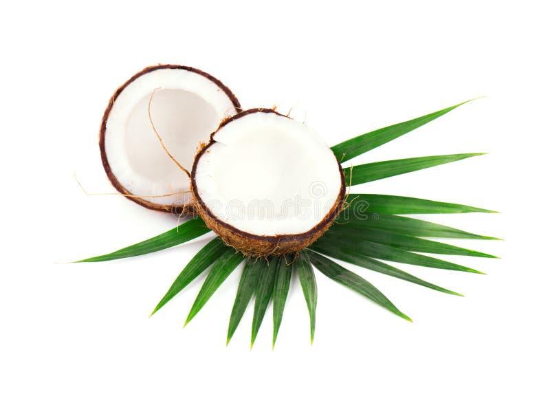 Noix de coco de fruit tropical Noix de coco fraîche avec des feuilles d'isolement sur le fond blanc photo libre de droits