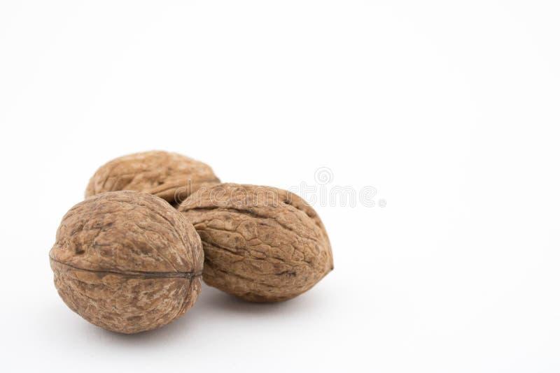 noix de fond blanches Les prestations-maladie des noix sont beaucoup images stock