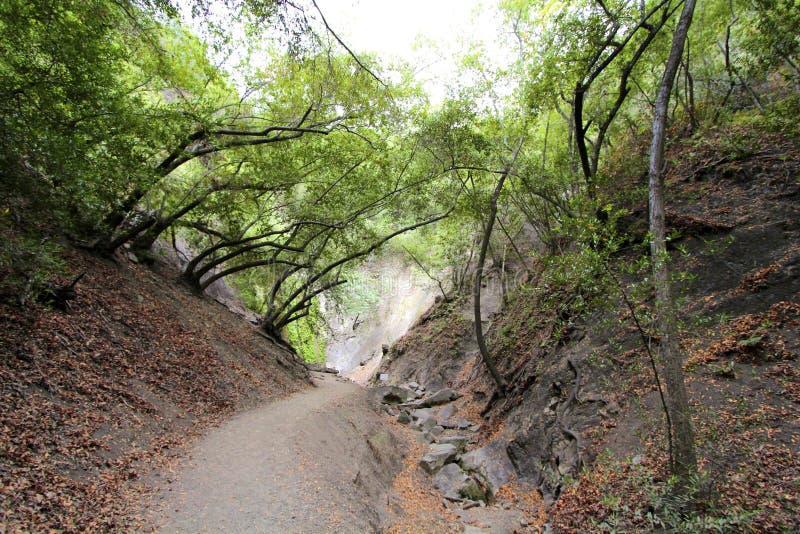 Nojoqui nedgångar parkerar Kalifornien royaltyfri bild