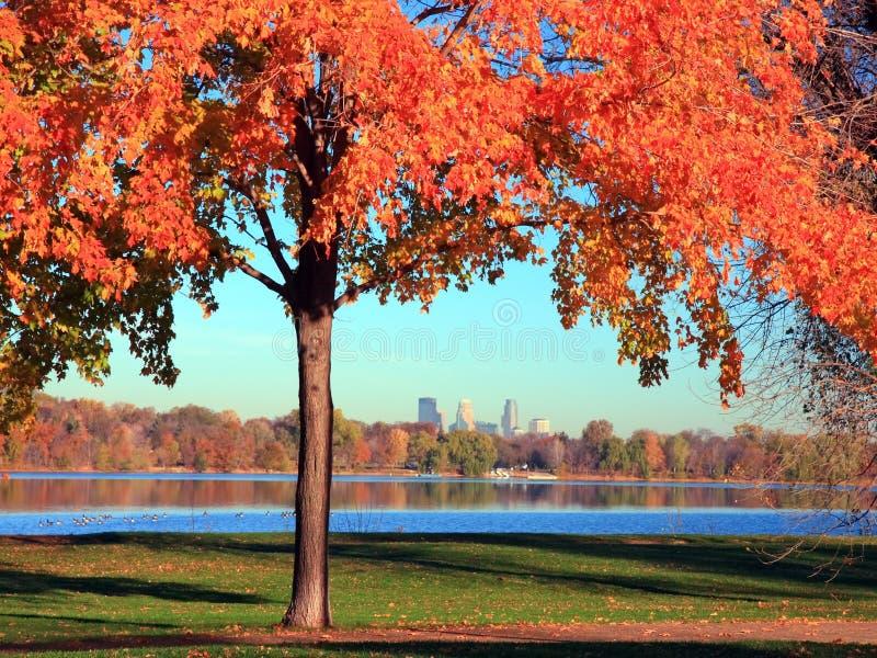 nokomis de Minneapolis de lac d'automne photographie stock libre de droits