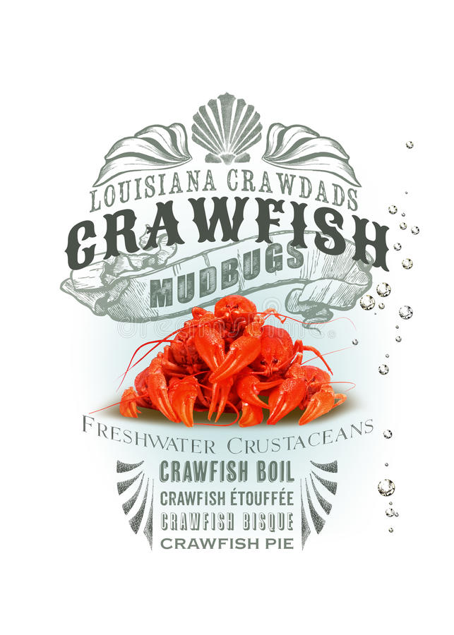NOLA Collection Louisiana Crawfish Background fotografia stock libera da diritti