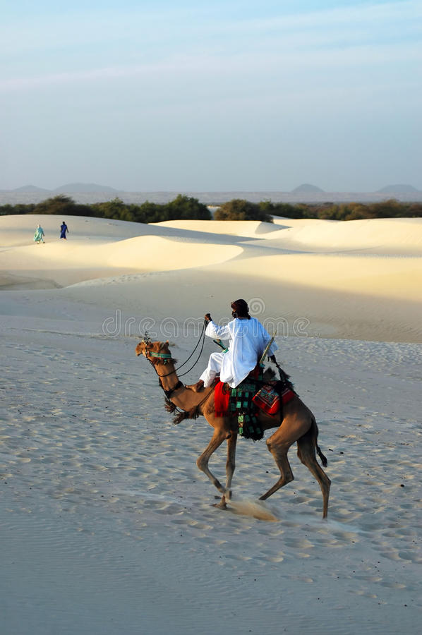 Download Nomad Riding A Camel In The Desert Stock Image - Image: 18554461