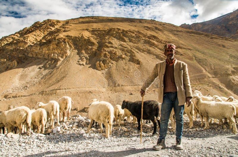 Nomade et ses moutons photographie stock libre de droits