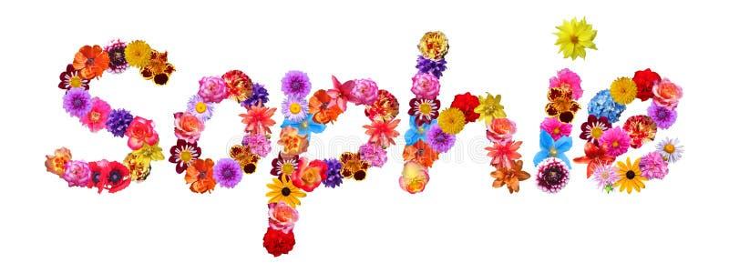 Nombre Sophie de las flores libre illustration