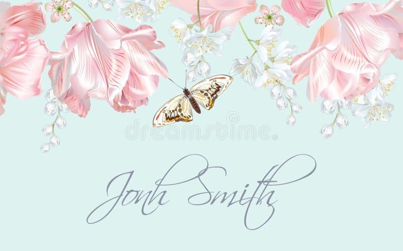 Nome da borboleta da tulipa ilustração stock