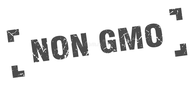 Non gmo stamp. Non gmo grunge vintage stamp isolated on white background. non gmo. sign vector illustration
