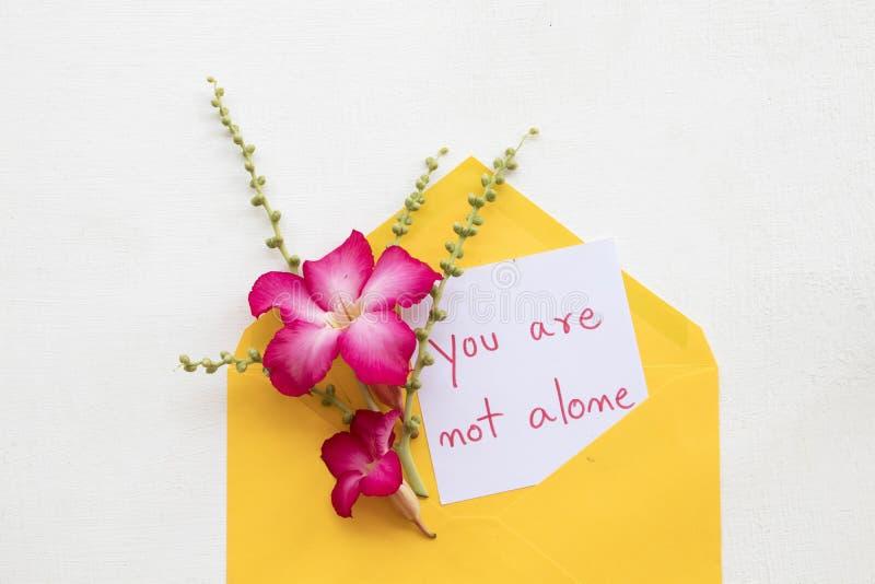 Non siete scrittura sola della carta del messaggio con il fiore fotografia stock libera da diritti