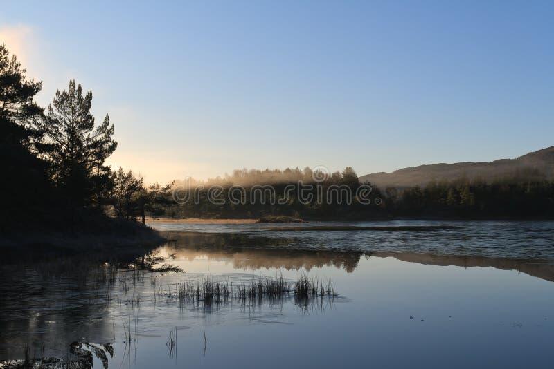 Download 霜 库存图片. 图片 包括有 秋天, 白天, 薄雾, 结构树, 户外, 室外 - 15681865