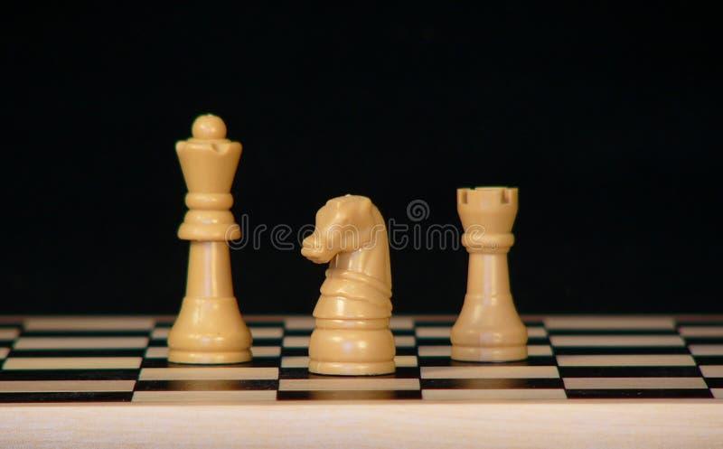 Download 棋 库存图片. 图片 包括有 王后, 两性体, 国王, 骑士, 玩具, 女王, 会议室, 典当, 作用, 比赛 - 63247