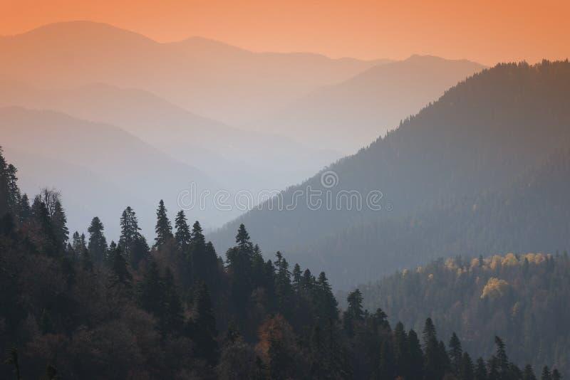 Download 山 库存照片. 图片 包括有 火鸡, 岩石, 新鲜, 本质, 安排, 秋天, 小山, 自治权, 蓝色, 结构树 - 65106