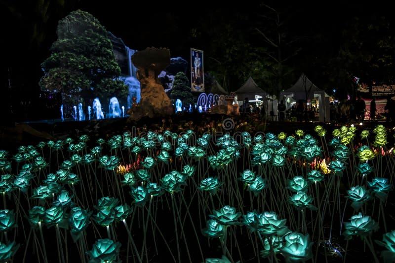 Nong Prajak Public Park Udon Thani, bokeh LED della Tailandia fiorisce le fibre ottiche di plastica illuminate variopinte in part immagini stock
