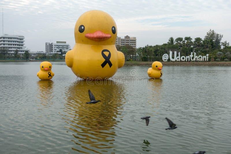 Nong Prajak Public Park (Udon Thani, Tailandia), señal en Udon fotos de archivo libres de regalías