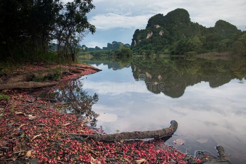 Nong Talay在早晨反射风景 免版税库存图片