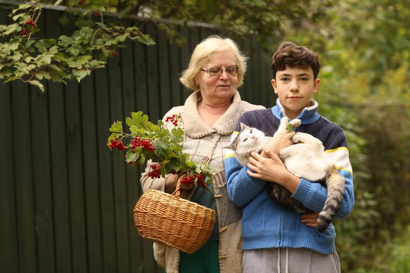 Nonna con il nipote con la fine del gatto e di viburno sulla foto sul fondo verde del giardino immagine stock