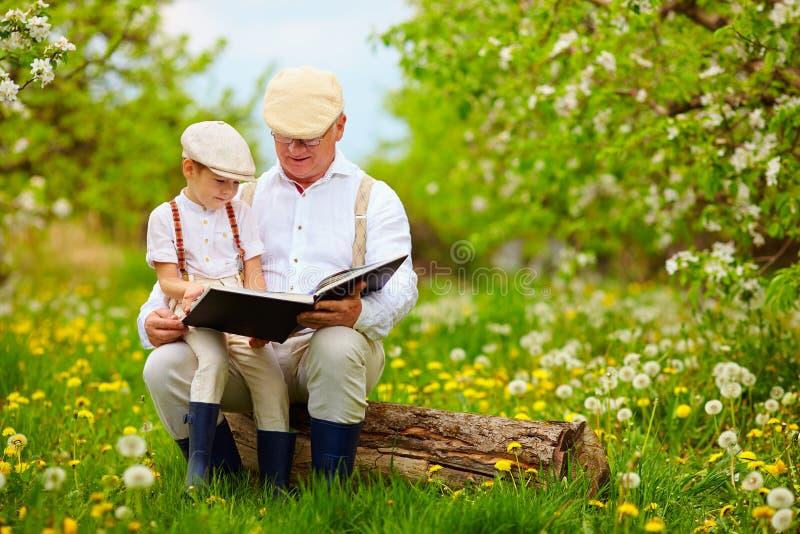 Nonno che legge un libro al suo nipote, in giardino di fioritura fotografia stock libera da diritti