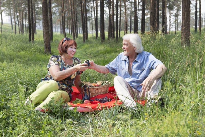Nonno e nonna che fanno picnic in legno fotografia stock libera da diritti