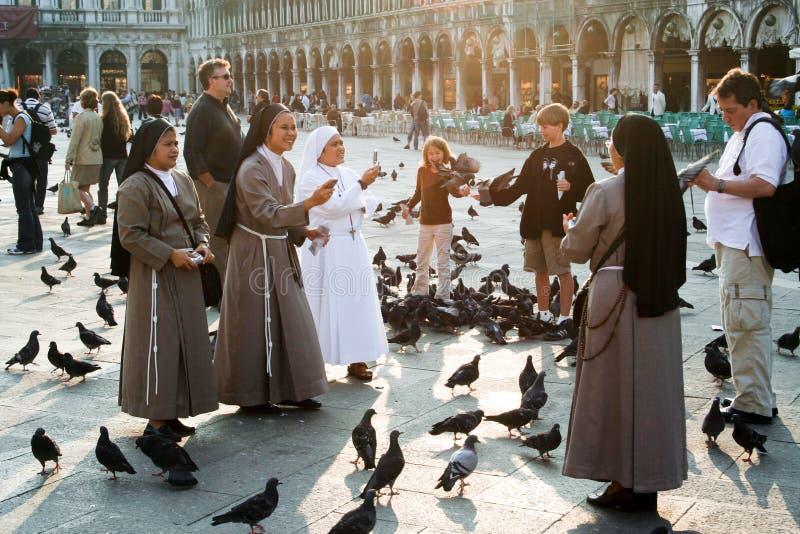 Nons sur l'alimentation de grand dos de San Marco grande image stock