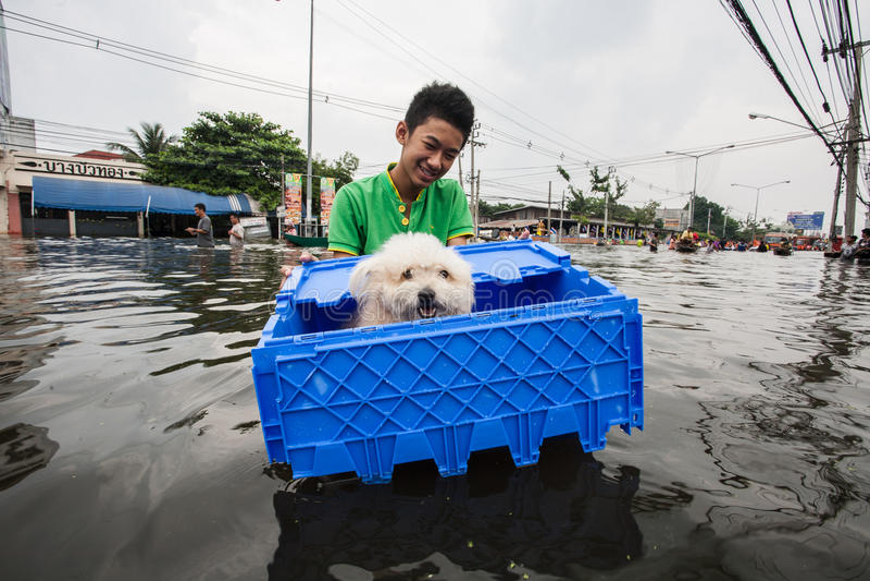 Nonthaburi flod i den Thailand 2011-The livsstilen av folk i mas arkivfoto