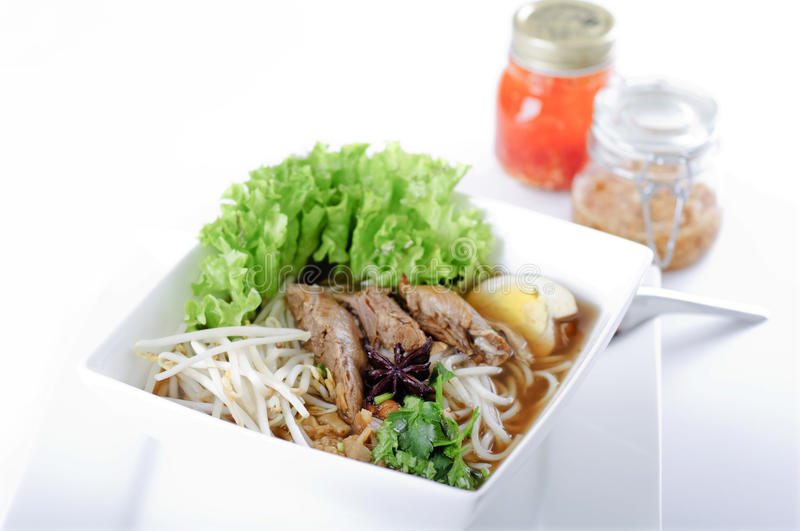 Noodle soup with Peking duck. A delicious noodle soup with Peking duck stock photography