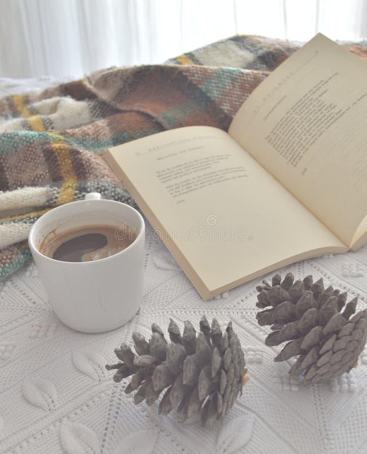 Nook чтения осени стоковая фотография rf
