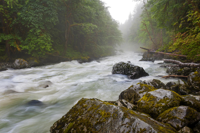 Nooksack River. stock images