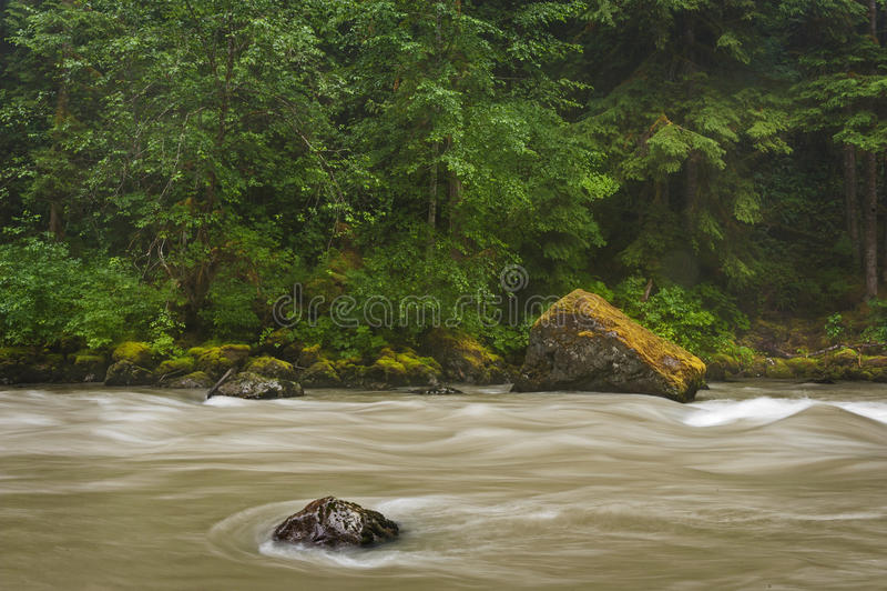 Nooksack rzeka obraz stock
