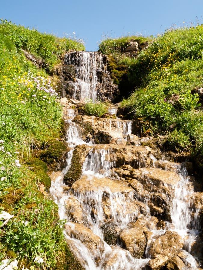 Noontimeliten vik i sommarhöglandet royaltyfri bild