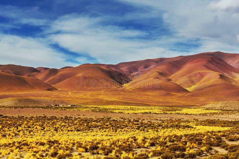 Noordelijk Argentinië stock afbeelding